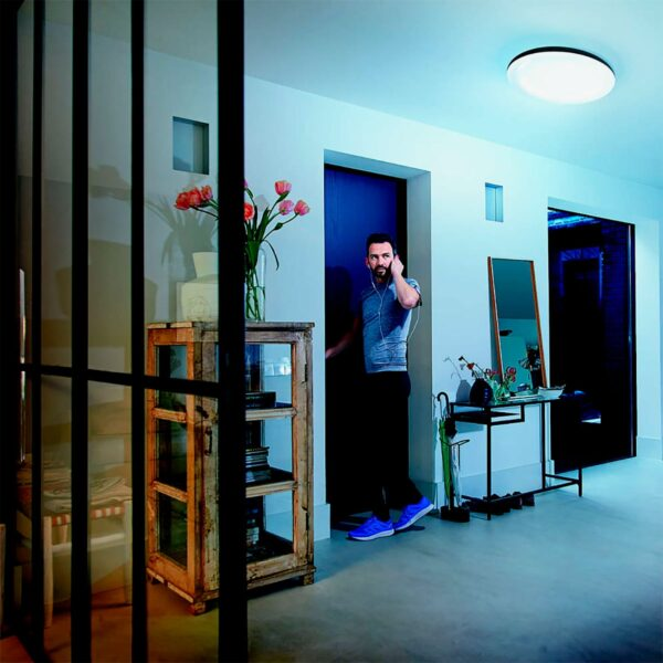 Lámpara de techo plafón Cher negro Philips Hue-1056