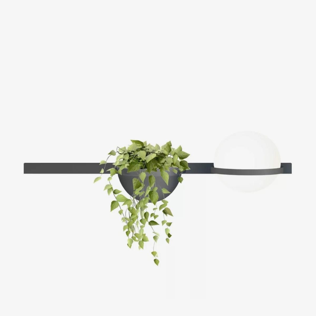 Aplique de pared Palma esfera planta grafito Vibia-0