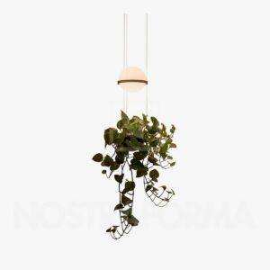 Lámpara colgante Palma esfera planta grafito Vibia-0