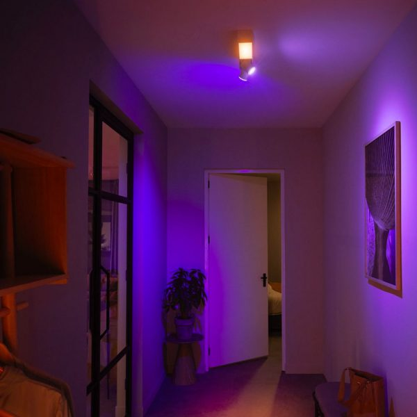 lampara-de-techo-plafon-dos-focos-flourish-led-blanco-philips-hue-foto-3