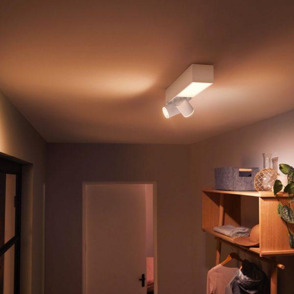 lampara-de-techo-plafon-dos-focos-flourish-led-blanco-philips-hue-foto-4