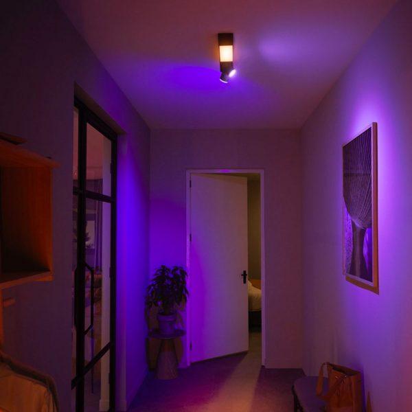 lampara-de-techo-plafon-dos-focos-flourish-led-negro-philips-hue-foto-3