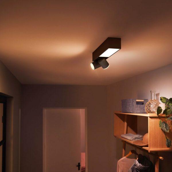 lampara-de-techo-plafon-dos-focos-flourish-led-negro-philips-hue-foto-4